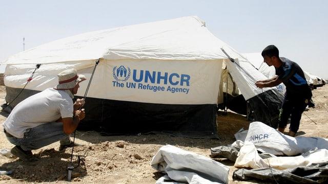 UNO-Mitarbeiter stellen ein Zelt auf.