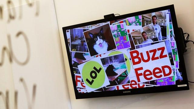 Ein Flachbildschirm an der Wand mit der Website von «Buzzfeed» aufgeschaltet.