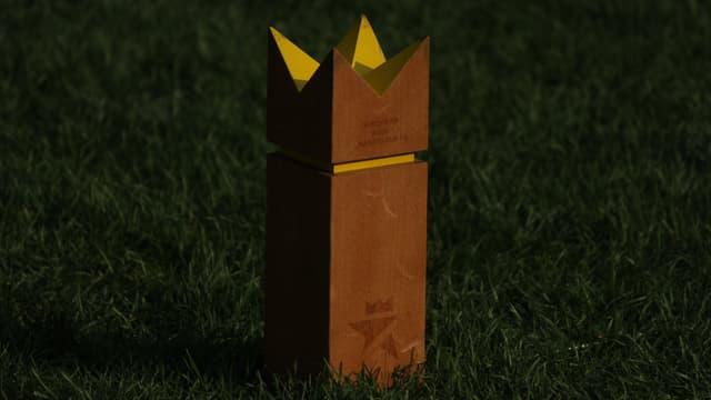 König im Kubb-Spiel