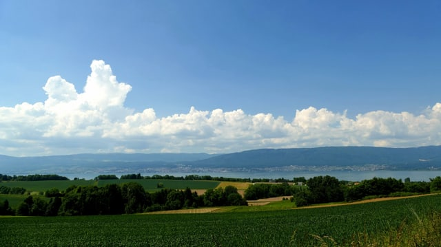 Blick von Cudrefin über den Neuenburgersee Richtung Jura.
