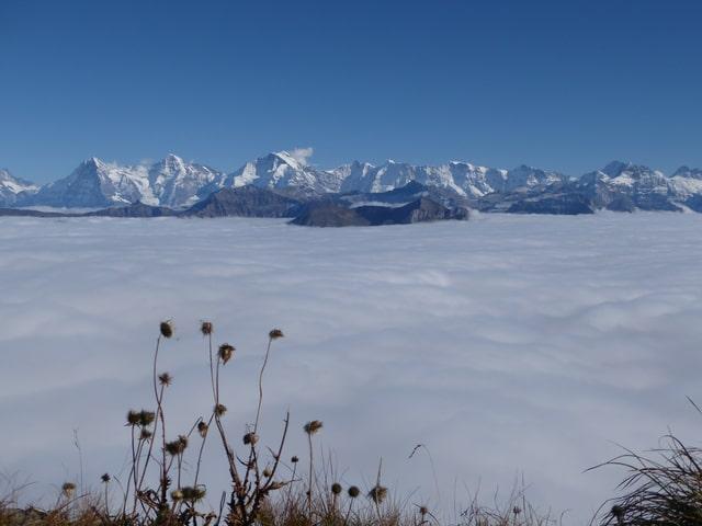 Nebelmeer, man sieht das Kandertal und das Mittelland vom Gipfel des Niesen aus.