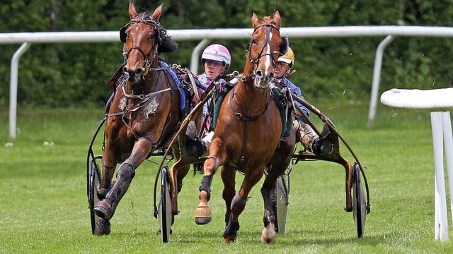 Pferderennen mit zwei Pferden die um die Kurve jagen.