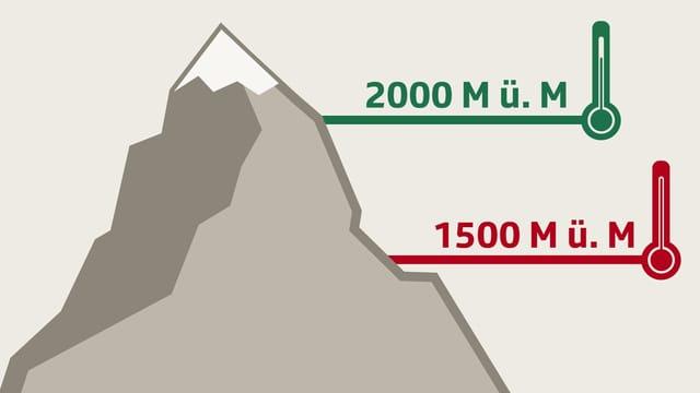 Ein Berg mit Thermometern.