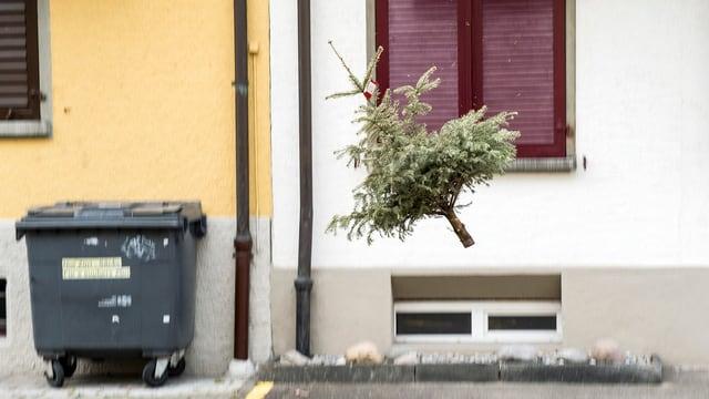 Weihnachtsbaum neben einem Müllcontainer.