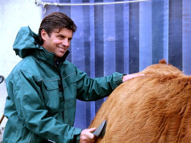Reto Schmid striegelt eine Kuh.