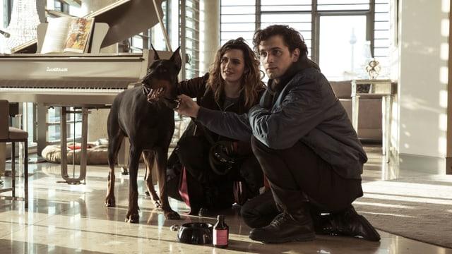 In einer luxuriösen Villa sitzen ein Mann, eine Frau und ein Kampfhund zusammen auf dem Boden.