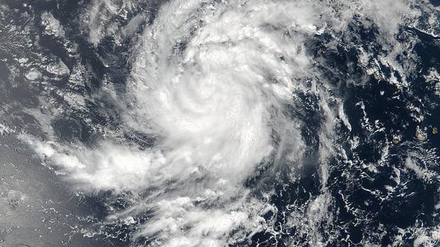 «Irma» auf einer Satellitenaufnahme