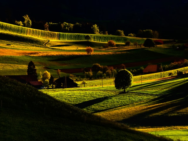 Bild von Wiesen und Hügeln in starken Grüntönen. Alles von der Morgensonne kräftig beschienen.