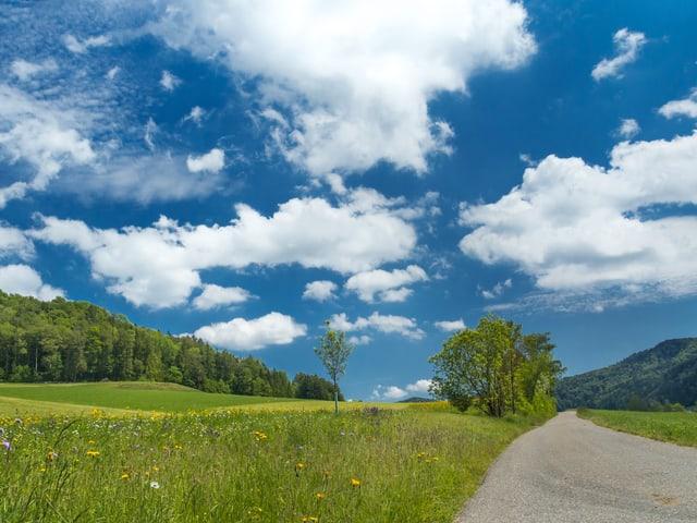 Sonniges Sommerwetter mit Schönwetterwolken in Turbenthal/ZH.