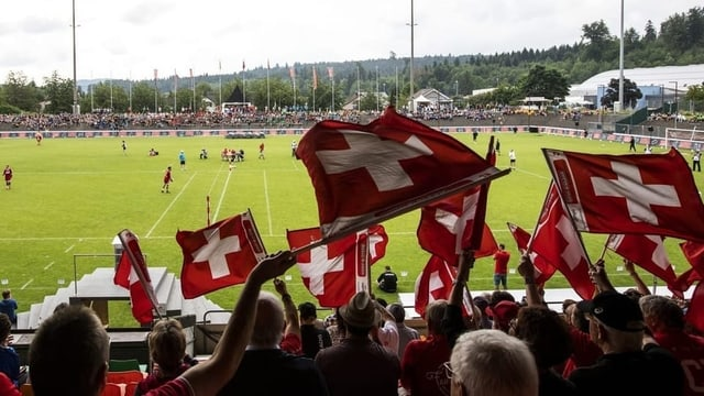 Vom 11. bis 17. August 2019 findet in Winterthur die Faustball-WM der Männer statt.