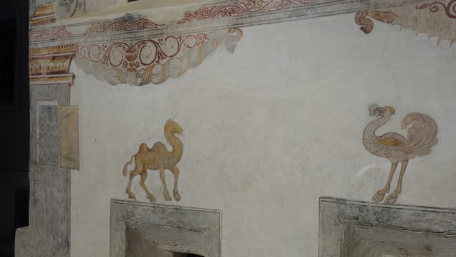 Quests animals ha Hans Ardüser probabel malegià giu da cudeschs.