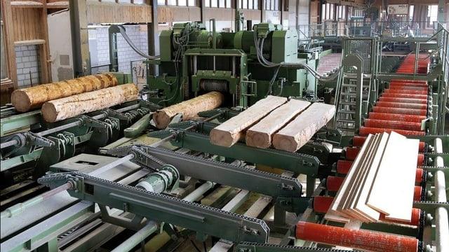 Baumstämme werden zu Brettern verarbeitet.