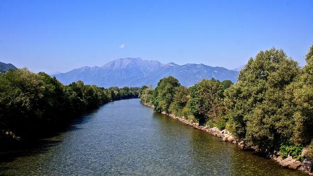 Blick auf den Ticino in der Magadinoebene.