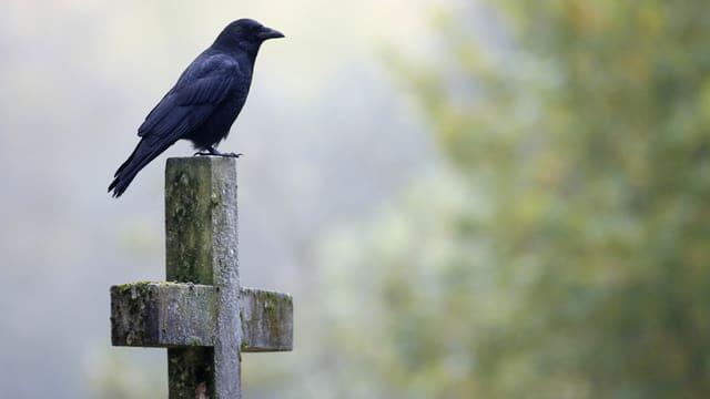 Grabkreuz mit Vogel.