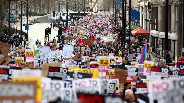 Proteste gegen Trump