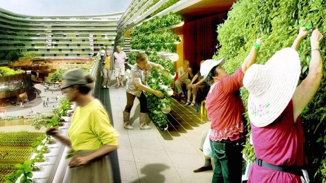 Modellbild: Ältere Menschen gärtnern in einer Siedlung der Zukunft.