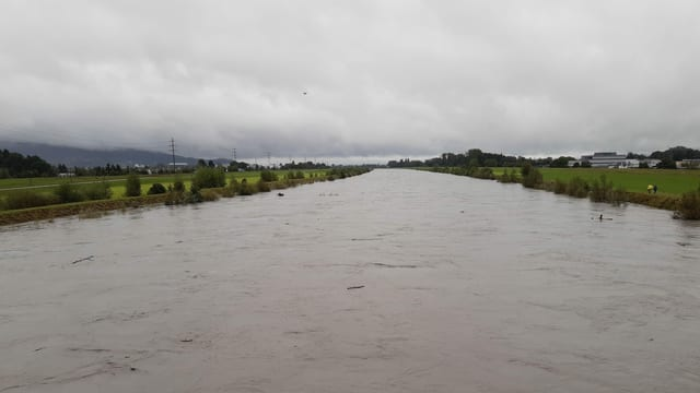 Das Flussbett des Rheins ist bis an die Deichkante voll.
