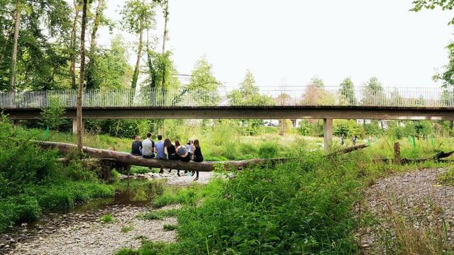 Jugendliche Murg-Auen-Park