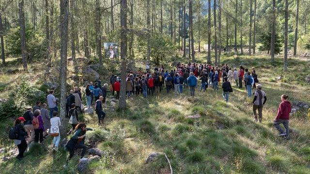 Menschen stehen in einem Wald und blicken auf eine Leinwand.