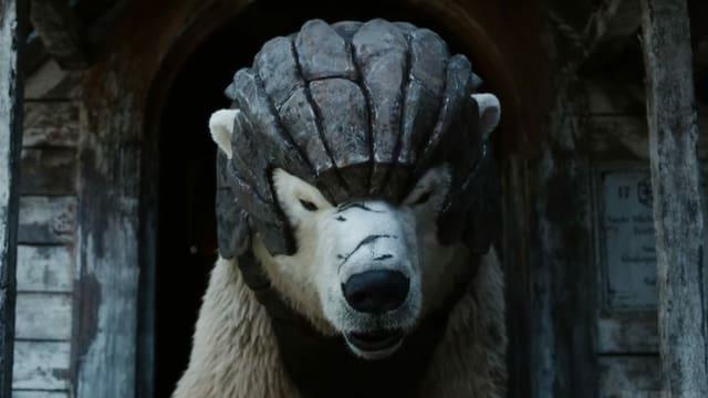 Ein Eisbär mit einem Helm.