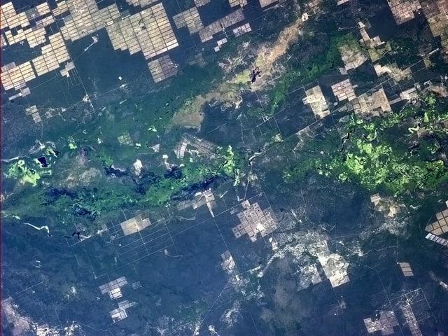 Blick aus dem Orbit auf ein Flutgebiet in Paraguay.