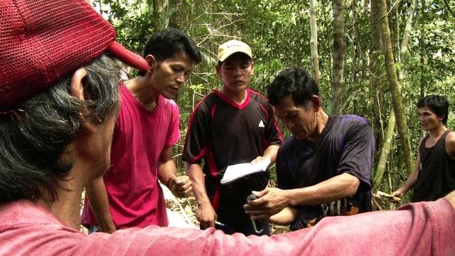 Video «Die Penan kämpfen um ihren Urwald» abspielen