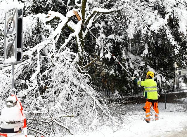 Zu sehen Bäume voller Schnee und Arbeiter in Zürich.