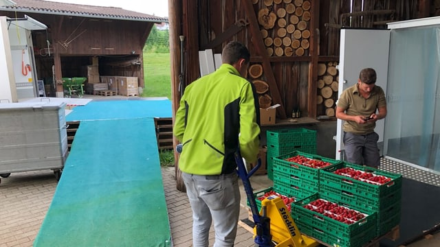 Markus Oettli und einer seiner Mitarbeitenden beladen die Lieferwägen.