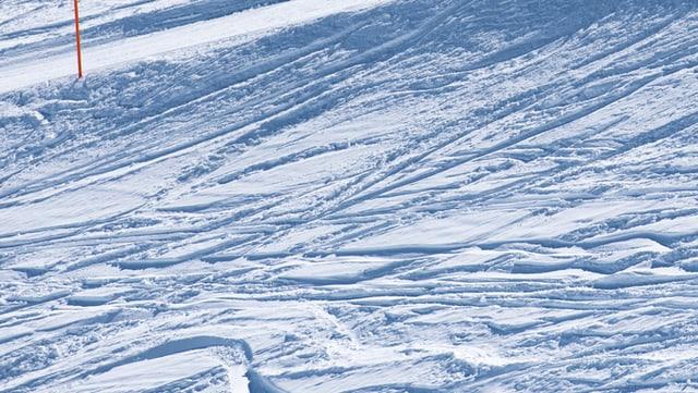Fastizs da skiunzs en la naiv