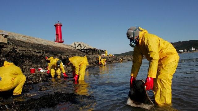 Arbeiter säubern das Meer vom Öl.
