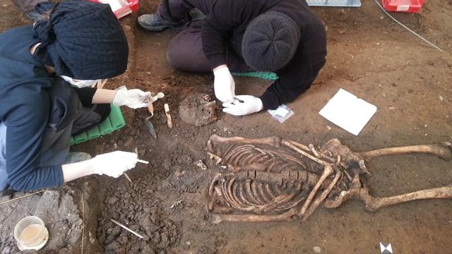 Zwei Archäologen legen ein Skelett frei.