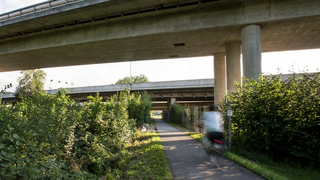 Auf dem Uferweg entlang der Reuss in Emmen wurde die Frau vom Velo gerissen und vergewaltigt.