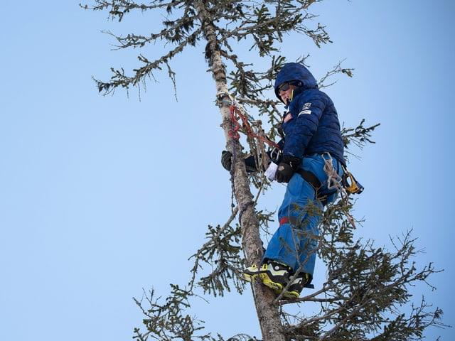 Rennzuschauer auf einem Baum neben der Piste