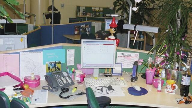 Ein Schreibtisch mit Pflanzen und viel Pink.