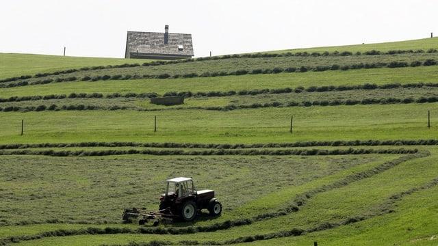 Ein Bauer mäht das Graus auf einem Hügel.