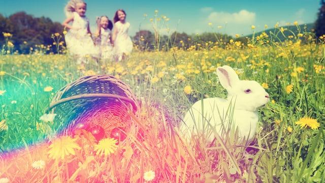 Auf einer Wiese sind im Vordergrund ein weisser Hase und ein Korb mit Eiern zu sehen, im Hintergrund laufen drei Mädchen in weissen Kleidern.
