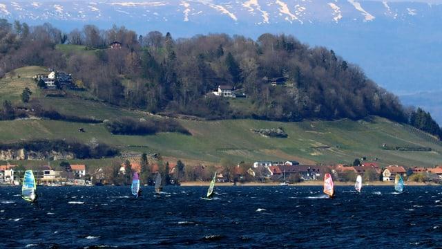 Zahlreiche Surfer waren am Samstag auf dem Murtensee unterwegs.