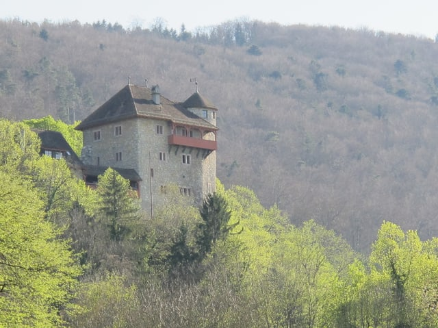 Burg im Wald.