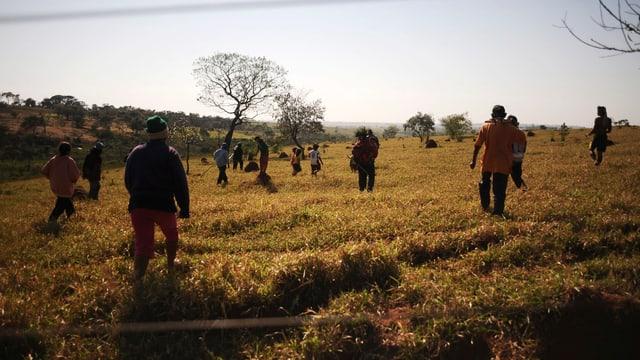 2012 versuchen Stammesangehörige im Bundesstaat Mato Grosso do Sul ihre Land zu besetzen.