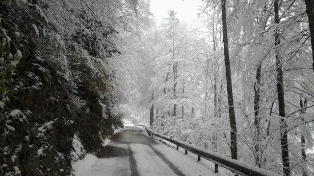 Verschneite Strasse am 5. November am Scheltenpass.