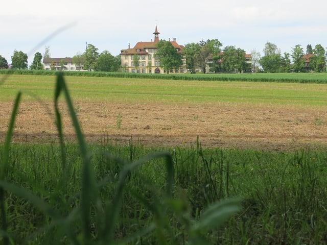 Feld, dahinter ein altes Gebäude.