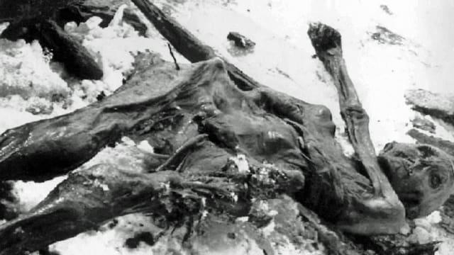 Ob die Bündner Gletscherforscherin einen zweiten Ötzi in den Bergen des Kantons Graubünden findet?