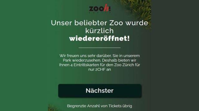 Screenshot gefälschte Seite Zoo Zürich