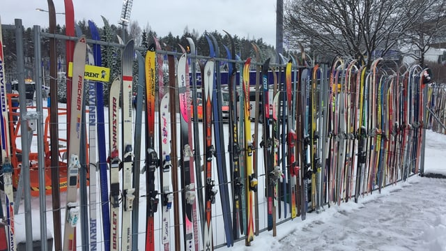 Purtret da skis.