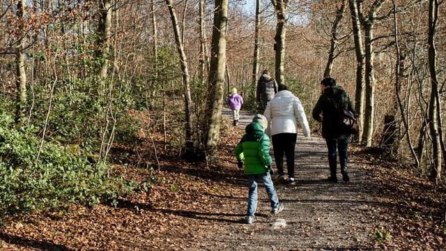 Eine Familie spaziert im Wald.