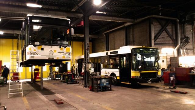 Zwei Schaffhauser Busse nebeneinander in der Werkstadt.