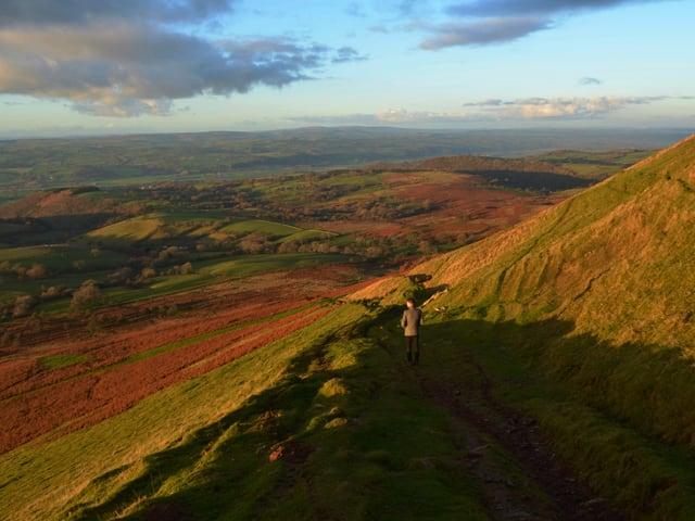 Hügelige, grüne Landschaft, Mann geht Weg entlang.