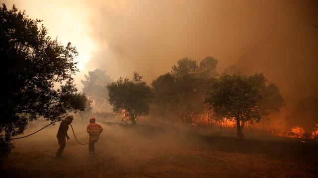 Rauch, Feuer, Feuerwehrmänner.
