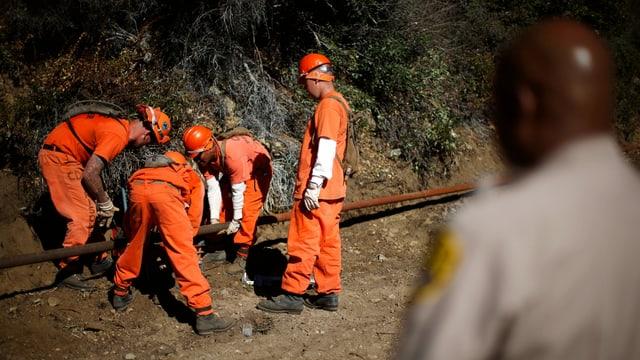 Häftlinge arbeiten an einem Rohr im Wald