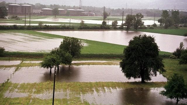 Überschwemmtes Kulturland bei Sennwald.